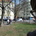 kosilo v parku