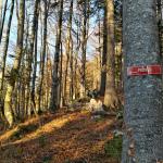 Izhodišče za markirano pot na Pršivec