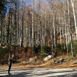 Konec čudovite krožne poti s parkirišča do Pršivca, čez Planino Viševnik in nazaj.