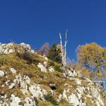 Približno 20 minut pred vrhom Pršivca se že odprejo dih jemajoči razgledi, pred pohodnikom pa se dviguje skalno pobočje, ki mu lahko zašibi kolena.