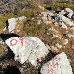 Z vrha Pršivca pa naprej na Planino Viševnik.