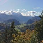 """Za primerjavo še pogled na Bohinj z Vodnikovega razglednika (1017 m). Pršivec je """"najvišji"""" vrh, če se sprehodite levo od smreke na skrajni desni strani fotografije."""